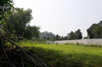 Cần bán lô đất giá rẻ diện tích 1,300m2, xã Tiến Xuân