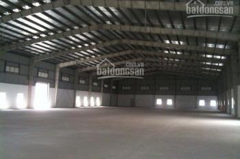 Cho thuê xưởng QL1A, Bình Chánh, DT 1300m2, giá 30 tr/th