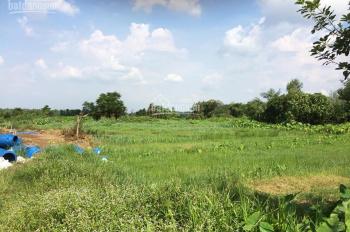 Cần bán gấp 4000m2 đất giáp sông Thị Tính ở An Điền, Bến Cát cách trung tâm TP Thủ Dầu Một 7km