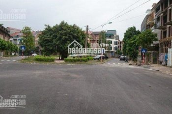 Chính chủ cần bán gấp căn nhà vườn Tổng Cục 5 Tân Triều đối diện vườn hoa DT 106m2, H ĐB giá 6.3 tỷ