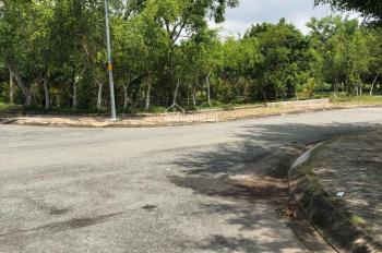 Bán gấp lô đất MT Phạm Thế Hiển, P7, Q8, cách chung cư Phú Lợi 200m, sổ hồng riêng, giá: 1.6 tỷ/nền