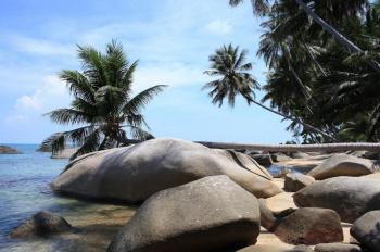 Chính chủ bán đất nằm trong KDL Bãi Xếp của Hòn Sơn Rái. DT:34.000m2. LH:chị Hồng 0946555546
