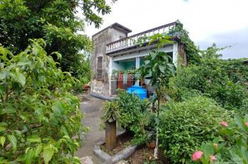 Cho thuê nhà riêng biệt, mái bằng 1.1 tr/tháng tại Cầu Đen Thái Bình, gần trường CĐSP Thái Bình