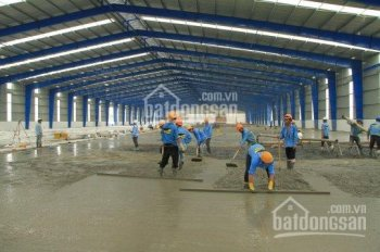 Cho thuê kho trong và ngoài KCN Vĩnh Lộc, Tân Tạo xây theo YC khách, DT 5000m2 10,000m2, 30,000m2