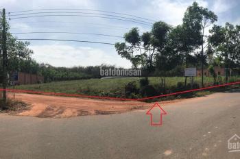 Bán 7.112m2 đất 2 mặt tiền đường nhựa thông từ Vsip 2 sang Nguyễn Văn Thành, Chánh Phú Hòa, Bến Cát