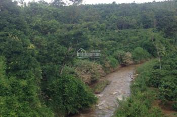 Đất rẫy diện tích 30ha cần bán huyện Ia Grai, Gia Lai. LH 0984.870.426