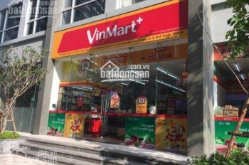 Cho thuê shophouse Vinhomes Central Park, DT từ 150m2 đến 250m2, giá tr/th. LH 0977771919
