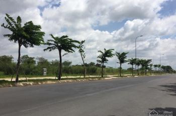 Chính chỉ bán gấp MT Nguyễn An Ninh, Đông Hòa cách Big C Dĩ An 300m SHR, 12tr/m2, Linh 0981728758