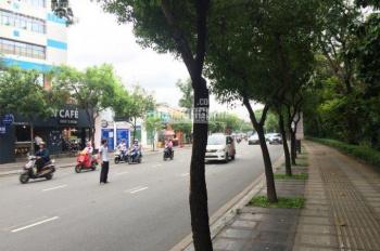 Bán nhà HXH 12m Lam Sơn, Phường 2, Tân Bình, DT: 8x23m. Giá 30 tỷ TL, LH: 0973001332 Vũ