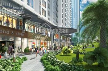 Cho thuê shophouse tòa P10, tầng 1, 50tr/th, LH 0911116861, sở hữu thuận lợi dân cư mặt đường 125m2