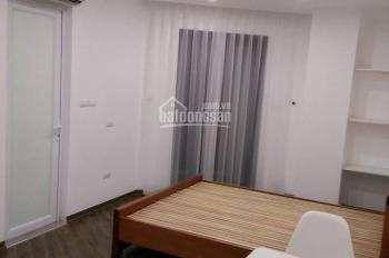 Cho thuê chung cư mini 1 phòng ngủ và khách đầy đủ đồ sàn gỗ, phố Tôn Đức Tháng, Đê La Thành nhỏ