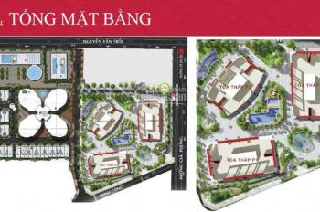 Chuyển nhượng CH 2 PN tòa P1 tầng thấp giá rẻ, nhận nhà ở ngay. Thủ tục nhanh gọn LH: 0901048666