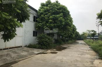Công ty Hà Yến cho thuê kho xưởng DT: 500m2, 1000m2, 5000m2 tại CCN Thanh Oai, Hà Nội