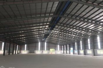 Cần cho thuê kho xưởng 5000m2 cộng 2000m2 sân bê tông, có PCCC, bình điện 400KVA container vào tốt