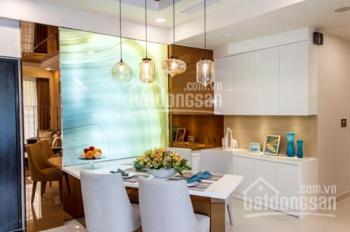 Chuyên cho thuê căn hộ tại Phú Mỹ Hưng, Q.7, TP. HCM. LH Hoàng Anh 0919 472693
