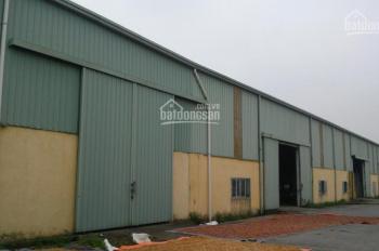 Cho thuê gấp nhà máy kho xưởng Công ty Trường Thành, DT: 400m2, 800m, 1500m2, 5000m2 cụm CN Hà Đông