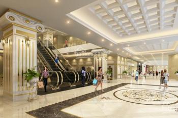 Bán căn hộ 3 PN, 3 WC, chỉ 6.5 tỷ, dự án D Le Roi Soleil Tân Hoàng Minh, LH: 0983.824.386