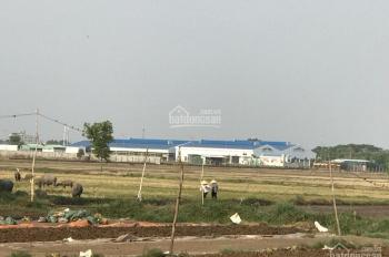 Gia đình cần bán mảnh đất 24492m2, xã Xuân Thới Thượng, giá 2,9 triệu/m2