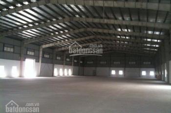 Cần cho thuê xưởng trong KCN Đức Hòa. DT 6000m2, giá 66.783 đ/m²/tháng