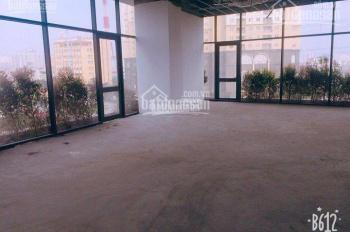 Cho thuê văn phòng tòa Ecolife Tố Hữu, cực đẹp 300 nghìn/m2/th (Chuẩn VP hạng B+)