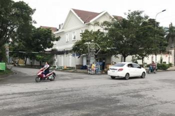 Bán nhà khu biệt thự Tấn Trường nhà xây để ở chắc chắn kiên cố, DT: 9x18m trệt 2 lầu giá 16,5 tỷ