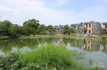 Bán 800m2 đất Ninh Xá, Thuận Thành, Bắc Ninh, phù hợp KD nhà nghỉ sinh thái