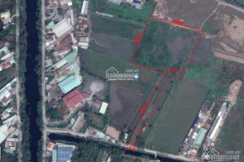 Trí BĐS - đất vườn 12.500m2 mặt tiền Kênh 7 (gần giáp đường Kênh C) giá tốt