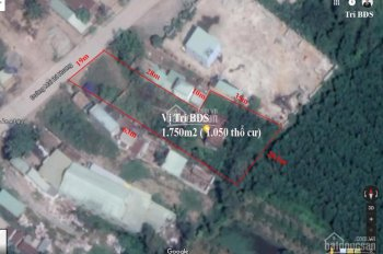 Trí BĐS - 1.750m2 đất có nhà xưởng ở mặt tiền đường Mai Bá Hương, gần Phật Cô Đơn, 25 tỷ