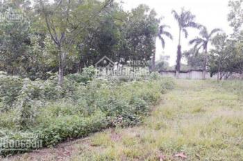 Bán đất trang trại nhà vườn DT 1,4ha tại Lương Sơn, Hòa Bình, giá 3,6 tỷ