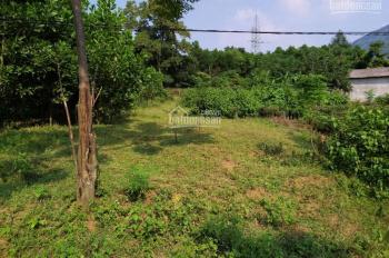 Gia đình chúng tôi cần bán gấp lô đất giá rẻ 1910m2 1tỷ1. LH 0975484290