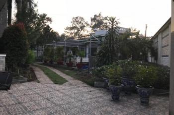 Cần bán nhà đất mặt tiền đường Hoàng Hoa Thám, P. Phú Lợi, Thủ Dầu Một, Bình Dương