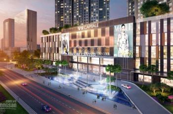 Chuyên cho thuê căn hộ D'Capitale Trần Duy Hưng từ 2-3PN, giá tốt nhất thị trường, LH: 0915 351 365