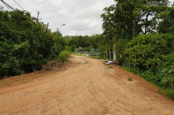 Bán đất mặt tiền đường Võ Thị Hết, đường 220 cũ, xã Hòa Phú, Củ Chi. Liên hệ: 0947 135 444
