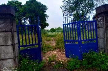 Cần bán 2300m2 giá rẻ tại gần ủy ban xã Nhuận Trạch, đường to đẹp