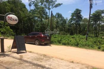 Chính chủ bán rẻ lô đất vàng, đầu tư sinh lợi cực cao, khu phố Tây Ông Lang. LH 0984789839