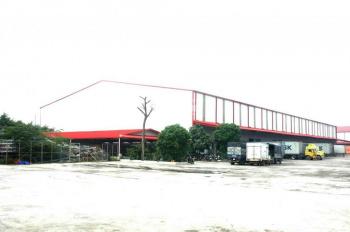 Cho thuê kho Long Bình - Biên Hòa, diện tích 50m - 5000m2, dịch vụ quản lý bốc xếp chuyên nghiệp