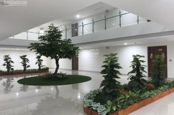 Tôi bán gấp căn hộ 141m2 tầng sân vườn tòa CT4 Vimeco Nguyễn Chánh, giá 28.5 tr/m2