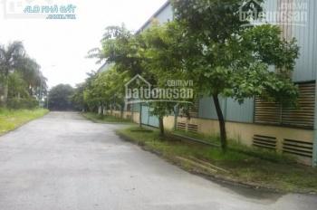 Cho thuê kho xưởng DT: 1000m2, 2000m2, 3600m2, 4500m2 tại KCN Hà Bình Phương, Thường Tín, Hà Nội