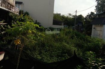 Đất vườn (trồng cây lâu năm) 6,5x27m, hẻm 5m gần ngã tư Giếng Nước xã Xuân Thới Sơn, Hóc Môn