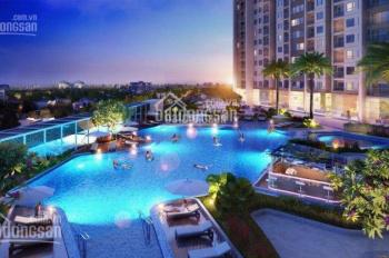 Chuyên cho thuê căn hộ D'Capitale Trần Duy Hưng từ 2-3PN, giá rẻ. LH: 0972.699.780