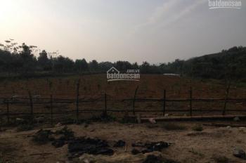 Cần bán 10ha đất trang trại, cách trung tâm Hà Nội 50km, vị trí thuận lợi