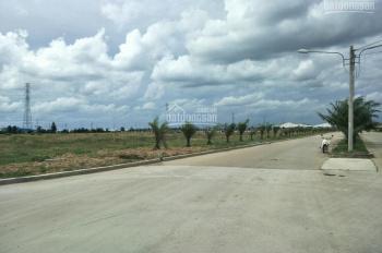 Cho thuê gấp 58.000m2 đất nằm trong khu công nghiệp Bàu Bàng. LH 0901 779 568