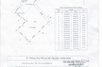 Cần bán gấp khu đất 6000m2 trên Củ Chi
