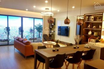 Chính sách và bảng giá tốt nhất mua nhà trong tháng giêng Amber Riverside 622 Minh Khai 0942638681