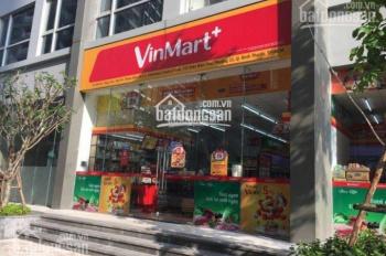 Cho thuê shophouse Vinhomes Central Park, DT từ 150m2 đến 250m2, giá 120 tr/th, LH 0977771919