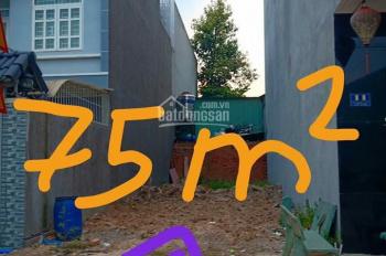 Bán gấp 75m2 đất thổ cư mặt tiền Bàu Cát 3 đang cho thuê KD cafe