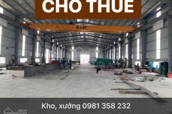 Cho thuê kho, xưởng tại Tân Tiến, Văn Giang, Hưng Yên, 10000m2 chính chủ 0988 180 363
