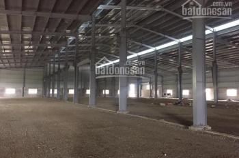 Công ty Đại Phát cho thuê kho xưởng DT 6000m2, Bạch Sam, Mỹ Hào, Hưng Yên. LH 0979 929 686