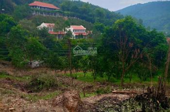 Cần bán 2.7ha thổ cư bám đất vườn giá rẻ, bên cạnh khu du lịch nghỉ dưỡng