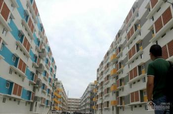 Chỉ 125 triệu, là có thể dọn vào ở ngay chung cư Becamex Định Hoà. LH: 0967537982